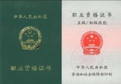 广东省保育员资格培训