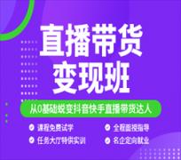深圳直播带货变现培训