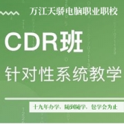 东莞茶山附近学CDR绘图软件培训来天骄